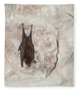 Bats Inside The Pyramid At Grupo Nohoch Mul At The Coba Ruins  Fleece Blanket