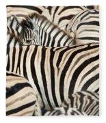 Burchells Zebras Equus Quagga Fleece Blanket