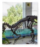 Centro De Investigaciones Paleontologicas Fleece Blanket