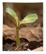 Coffee Seedling Fleece Blanket