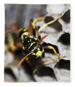 Common Wasp Vespula Vulgaris Fleece Blanket