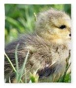 Cute Baby Goose Fleece Blanket