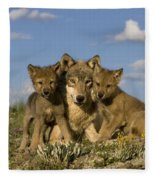 Gray Wolf And Cubs Fleece Blanket