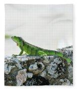 Green Iguana Fleece Blanket