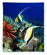 Hawaiian Reef Scene Fleece Blanket