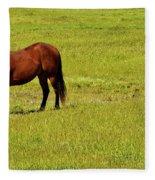 Horse Grazing Fleece Blanket