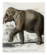 Indian Elephant, Endangered Species Fleece Blanket