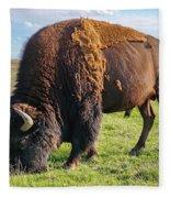Kansas Buffalo Fleece Blanket