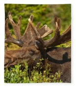 Moose Fleece Blanket