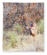 Mule Deer Doe Fleece Blanket