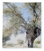 Olive Trees Fleece Blanket