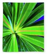 Plants And Flowers In Hawaii 547 C Fleece Blanket