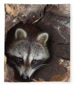 Raccoon Procyon Lotor Fleece Blanket