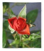 Red Rose Blooming Fleece Blanket