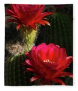 Red Torch Cactus  Fleece Blanket