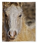 Red Willow Pony Fleece Blanket