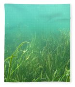 Shallow Freshwater Lake Fleece Blanket