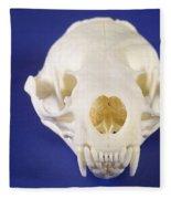 Skull Of A River Otter Fleece Blanket