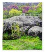 Spring At Devils Den Fleece Blanket