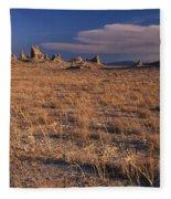 Trona Pinnacles Fleece Blanket