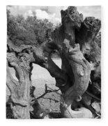 Twisted Driftwood Fleece Blanket