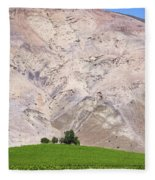 Vines In The Atacama Desert Chile Fleece Blanket