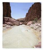 Wadi Zered Western Jordan Fleece Blanket