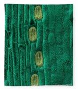 Wheat Leaf Stomata, Sem Fleece Blanket