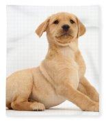Yellow Labrador Retriever Puppy Fleece Blanket