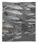 Yellowfin Goatfish Fleece Blanket