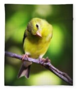 3008 - Goldfinch Fleece Blanket