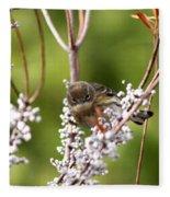 3172 - Warbler Fleece Blanket