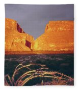317828 Sunrise On Santa Elena Canyon  Fleece Blanket