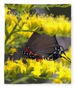 3454 - Butterfly Fleece Blanket