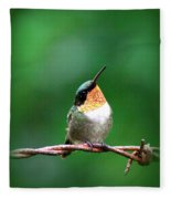 3531 - Ruby-throated Hummingbird Fleece Blanket