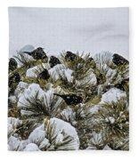 4 And 20 Blackbirds Fleece Blanket