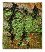 Aspen Bark After The Rain Fleece Blanket