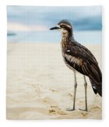 Bush Stone-curlew Resting On The Beach. Fleece Blanket