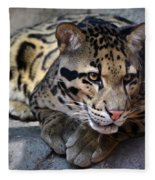 Clouded Leopard Fleece Blanket