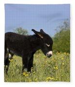 Donkey Foal Fleece Blanket