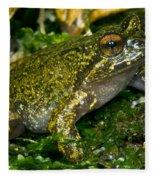 Mehu�n Green Frog Fleece Blanket