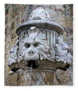 Public Fountain In Dubrovnik Croatia Fleece Blanket