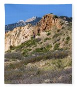 Red Rock Canyon Open Space Park Fleece Blanket