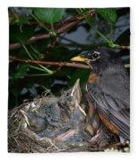 Robin Feeding Its Young Fleece Blanket