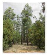 Show Low Landscape Fleece Blanket