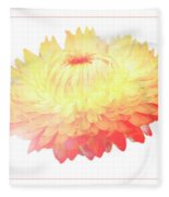 Strawflower Fleece Blanket