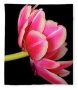 Tulip  Macro Fleece Blanket