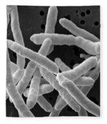 Yersinia Enterocolitica Bacteria Fleece Blanket