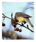 4424 - Cedar Waxwing Fleece Blanket