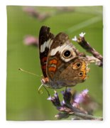4467 - Butterfly Fleece Blanket